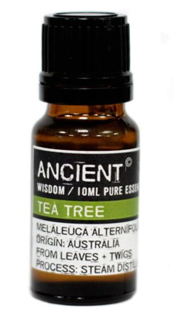 Ulei esential de Tea Tree (Melaleuca Alternifolia), 10ml - Ancient Wisdom
